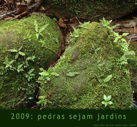 Pedras sejam jardins