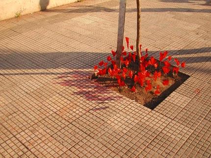Intervenção Jardim - Grupo Poro - Santo Amaro, SP